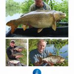 Homersfield Lake summer newsletter – OUT NOW