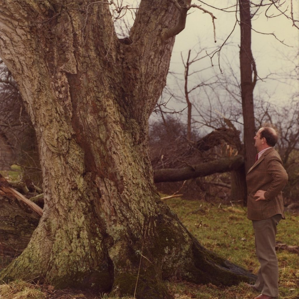 Symonds history - 1970s - dad with walnut tree