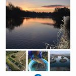 Homersfield Lake Winter Newsletter OUT NOW